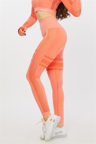Gymwolves Dikişsiz Spor Tayt | Orange | Seamles Leggings / Queen Serisi